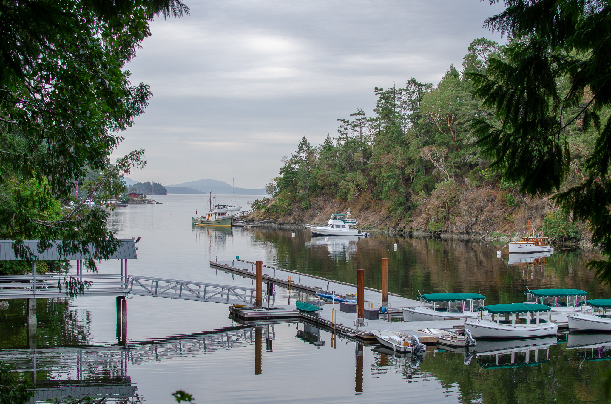Glassy water with a pier and greenery surrounding. There are mountains in the distance